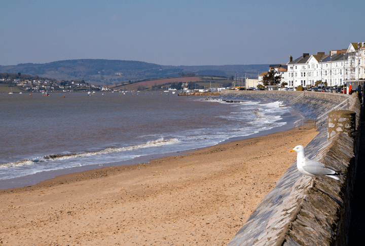Exmouth - play games and walk the Jurassic Coast